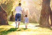 Visão traseira do pai e sua filhinha andando de mãos dadas em um prado no parque — Fotografia de Stock