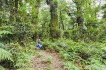 Caminhante feminina descansando ao longo da trilha olhando para as árvores — Fotografia de Stock