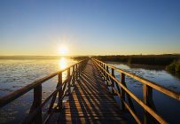 Дерев'яні boardwalk ранку — стокове фото