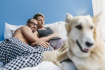 Gay couple with dog lying in bed, using laptop — Stock Photo