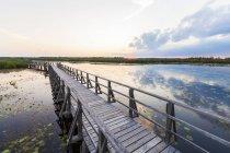 Boardwalk озеро у ранку — стокове фото