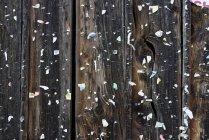 Parede de madeira com placard permanece, textura — Fotografia de Stock