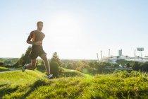 Deportiva hombre corriendo en el Prado en el Parque - foto de stock