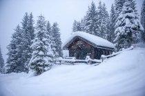 Austria, casetta di caccia innevata — Foto stock