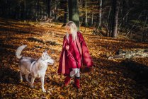 Red Riding Hood, Girl walking in forest with husky — Stock Photo