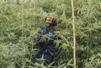 Молодой бизнесмен со смартфоном стоит между кустами — стоковое фото