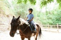 Маленький мальчик, лошади в школа — стоковое фото