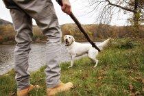 Homme qui joue avec le chien à un lac en automne — Photo de stock