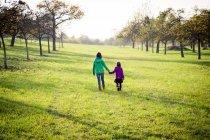 Zwei Schwestern gehen Hand in Hand auf einer Wiese im Herbst — Stockfoto