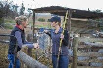 Дві жінки, робота на фермі і говорити — стокове фото