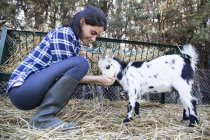 Femme alimentant une petite chèvre dans une ferme — Photo de stock