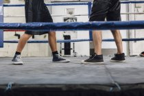 Cropped image of legs of two boxers in boxing ring — Stock Photo