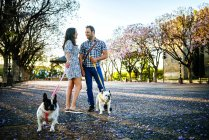 Couple parlant tout en promenant leurs chiens — Photo de stock