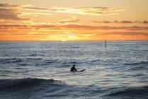 Surfer in the sea at sunrise — Stock Photo