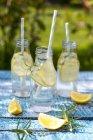 Скибочками лимона і розмарин і пляшки домашнє лимонад на садовий стіл — стокове фото