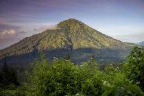 Columna de humo del volcán, indonesia - foto de stock