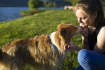 Teenage girl with her dog at the lake shore — Stock Photo