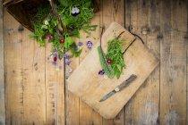 Hierbas frescas y flores comestibles - foto de stock