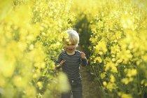 Menino no campo canola amarelo — Fotografia de Stock