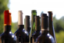 Close up of Row of different wine bottles — Stock Photo