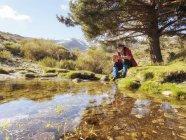 Іспанія, Сьєрра-де-Gredos, людина сидить гірський струмок, під Хвойні дерева в Яскраве сонце — стокове фото
