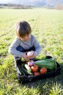 Boy crouching on meadow with basket full of vegetables — Stock Photo