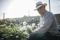 Portrait of senior man with picked flowers in his garden — Stock Photo
