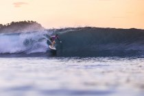 Indonesia, Sumbawa island, Surfer on wave at sunset — Stock Photo