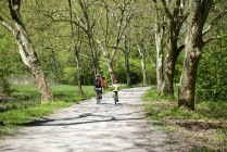Мати і дочка на велосипедах шлях у ліс — стокове фото