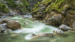 Autriche, Tyrol, gorge Sprachen, ruisseau Sparchenbach — Photo de stock