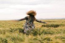 Donna che balla in un campo — Foto stock