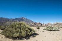Іспанія, Тенеріфе, ландшафт і рослинності в регіоні El Тейде — стокове фото