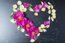 Peony and rose petals in heart shape — Stock Photo