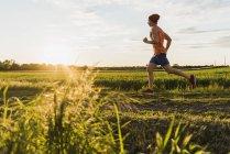 Молодой человек, бег трусцой, против солнца — стоковое фото