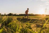 Молода людина, біг підтюпцем, проти сонця — стокове фото