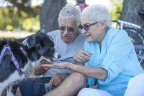 Coppia di anziani che alimenta il loro cane all'aperto — Foto stock