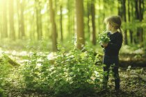 Girl in forest picking flowers — Stock Photo