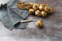 Affumicato treccia di aglio — Foto stock