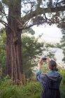 Вид сзади на молодую женщину, фотографирующую природу со смартфоном — стоковое фото