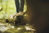 Mädchen im Wald stehen auf Baumstamm — Stockfoto