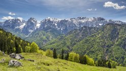 Autriche, Tyrol, Alpes, Kaisertal, Wilder Kaiser — Photo de stock