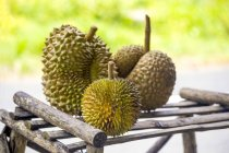 Durians frais sur support en bois — Photo de stock
