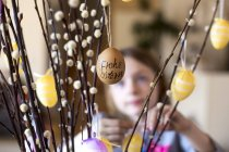 Easter eggs hanging on twigs of pussy willow — Stockfoto