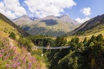 Austria, Tirol, Valle de ventilación cerca de puente de la suspensión de la ventilación - foto de stock
