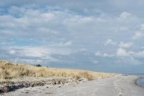 Данія, HAL, дюни і пляж денний час — стокове фото