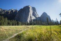 USA, California, El Capitan in Yosemite National Park — Stock Photo