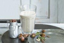 Стакан домашнего орехового молока и лесных орехов — стоковое фото
