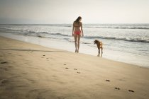 Woman walking with dog at the beach — Stock Photo