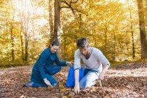 Пара, збору солодкого каштани в осінній ліс — стокове фото