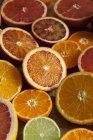 Metà di diversi agrumi — Foto stock